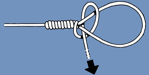 Bimini Twist Knot Step 6