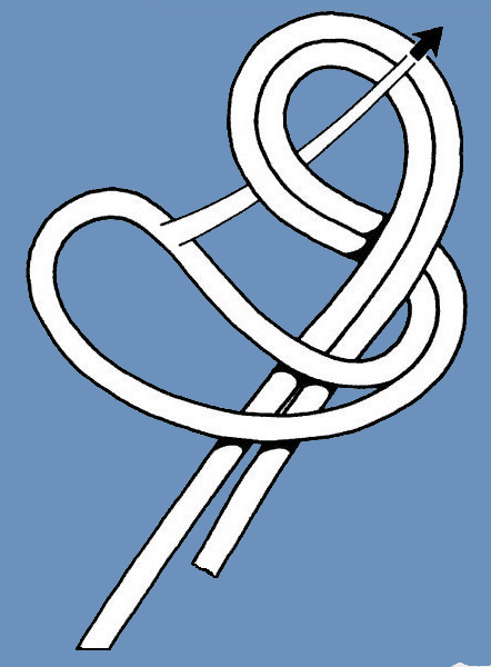 Figure eight loop 2
