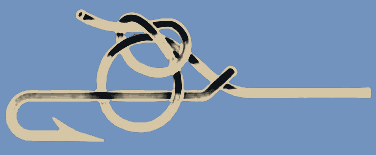 Turle Knot 1