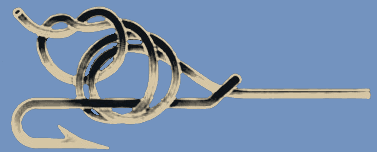 Turle Knot 3